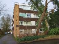 26b Normanton Road Apartment to rent