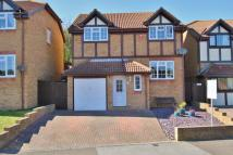 property to rent in NEWHAVEN - AUGUSTFIELDS