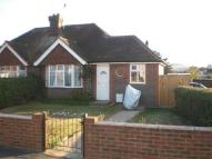 Bungalow to rent in POLEGATE