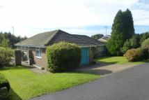 3 bed Detached Bungalow in South Bank, Hassocks...