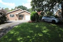 3 bedroom Bungalow for sale in North End, Ditchling...