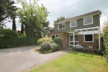Drifters Detached house for sale