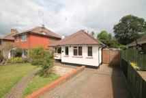 Detached Bungalow for sale in 31 Dale Avenue, Hassocks...