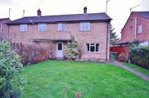 Woody semi detached house to rent