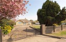 3 bedroom Bungalow for sale in Cattlegate Road, Enfield...