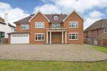5 bedroom new home in Beech Hill Avenue...