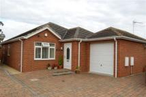 3 bed Bungalow in Cottage Gardens...