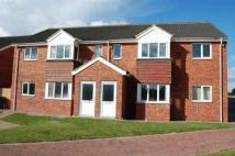 2 bed Apartment for sale in Pine Park, Humber Road...