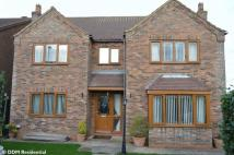 4 bedroom Detached property in Forkedale...