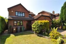 Detached property to rent in Flatt Lane, Prenton...