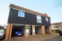 property to rent in Magnolia Way, Costessey