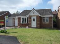 Bungalow for sale in Cragleas, Hobson, NE16