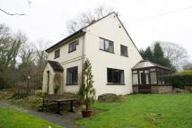 3 bed Detached house in Cherry Trees...
