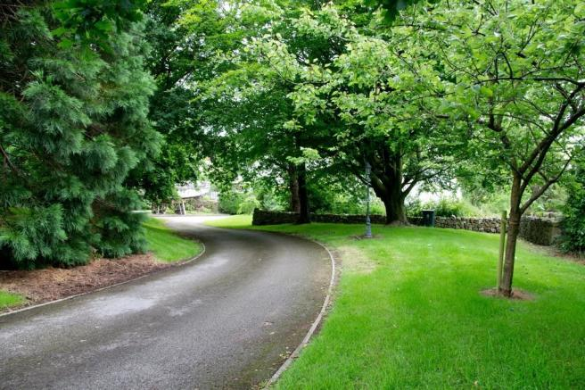 Tree Lined Drivew...