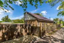 Falmer Road Chalet for sale