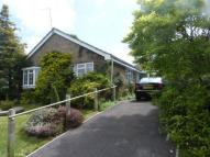Detached Bungalow for sale in Vernons Road, Newick...