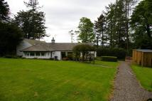 Detached Bungalow for sale in Kipp Mews,  Kippford...