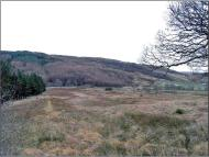 Plot for sale in Anaheilt, Strontian, PH36