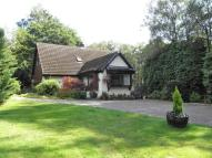 4 bed property in Burn Bank House & Lodges...