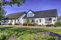 7 bedroom Detached home in Lochan Cottage Guest...