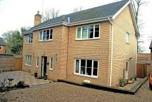 Detached property for sale in Gorsewood Road, Hartley
