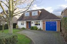 Detached home for sale in Woodlands Avenue HARTLEY
