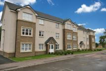 2 bedroom Flat in 2/1, 9 Bothlin Court...