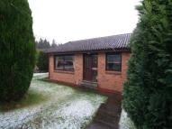 Detached Bungalow for sale in Turnhill Avenue, Erskine...