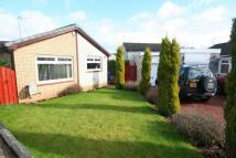 Semi-Detached Bungalow in Millfield Wynd, Erskine...