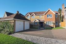 Detached property for sale in Littlewood Lane, TN22
