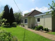 Detached Bungalow in The Hillocks, Lyneham...
