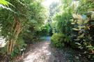 Garden (image 2)