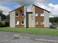 Studio flat to rent in Tippetknowes Court...