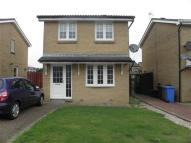 Beechwood Park Detached property to rent
