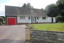 3 bed Detached Bungalow to rent in Ediscum Garth...