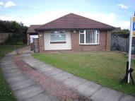 3 bed Detached Bungalow to rent in Mereston Close...