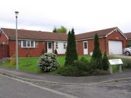 4 bed Detached Bungalow to rent in Barberry Close...