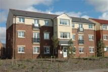 Apartment to rent in Hadleigh Walk...