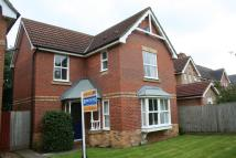 Detached house to rent in Luccombe Close...