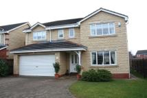 Detached property to rent in Trecastell...