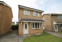 Detached property to rent in Spurrey Close...