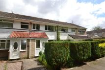 semi detached property to rent in Scargill Drive...
