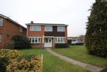 property to rent in Lightwater
