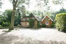 Detached home in CHOBHAM ROAD, OTTERSHAW...