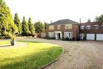 house to rent in WORPLESDON, SURREY