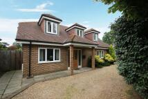 Woodham property to rent
