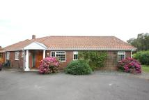 Bungalow to rent in Chobham