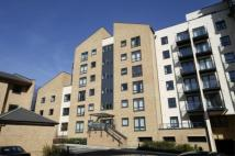 1 bed Apartment in WOKING