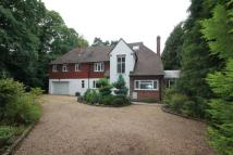 Detached house to rent in Pyrford