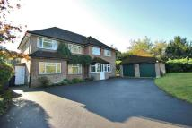 Detached house to rent in Horsell, Woking